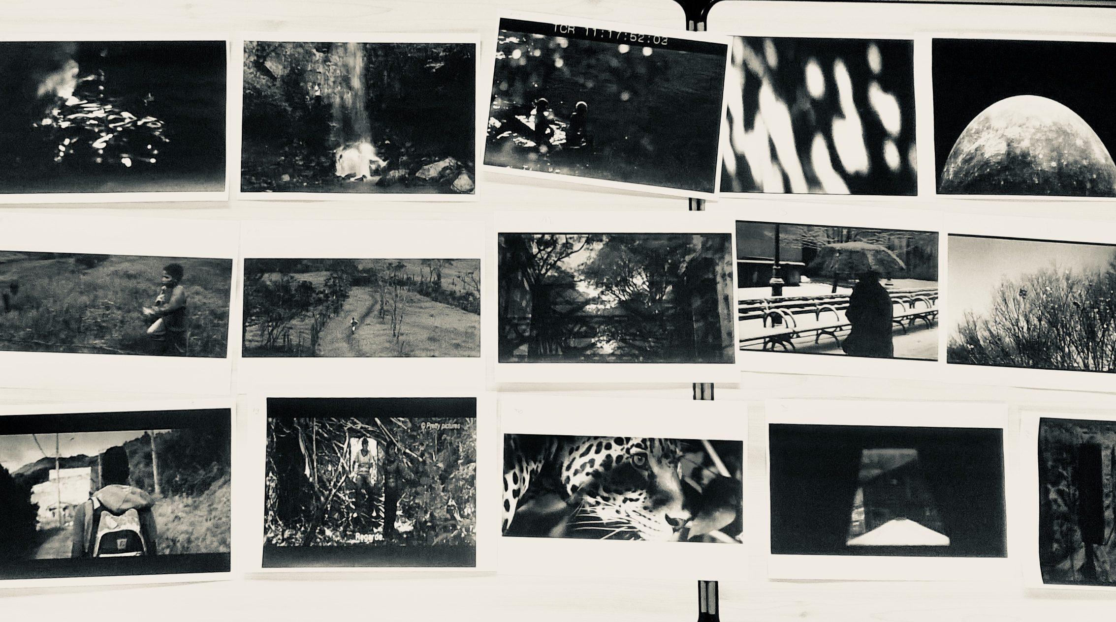 Sélection de captures d'écran représentant les extraits vidéo sélectionnés.